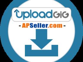UploadGIG 高级帐号 卡密 白金会员 – 客户购买专页