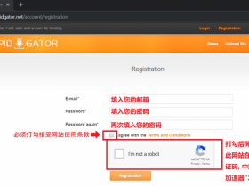 RapidGator 注冊和高级帐号激活码使用教学