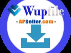WUPFile 高级帐号 激活码 卡密 白金会员 - 客户购买专页