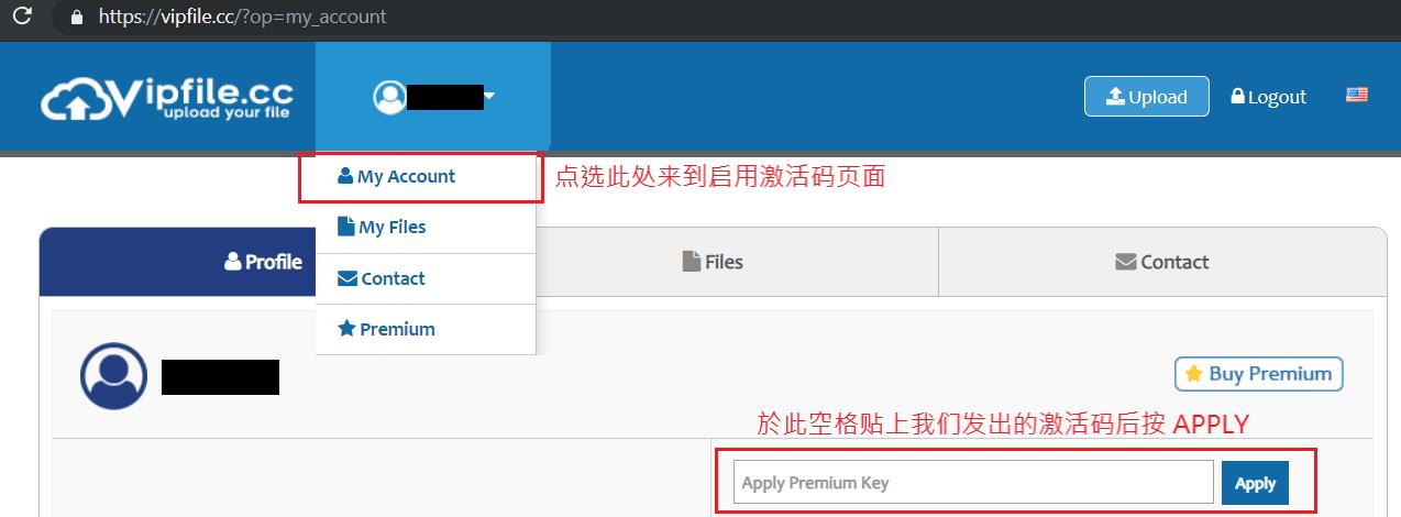 VipFile 注冊和高级帐号激活码使用教学