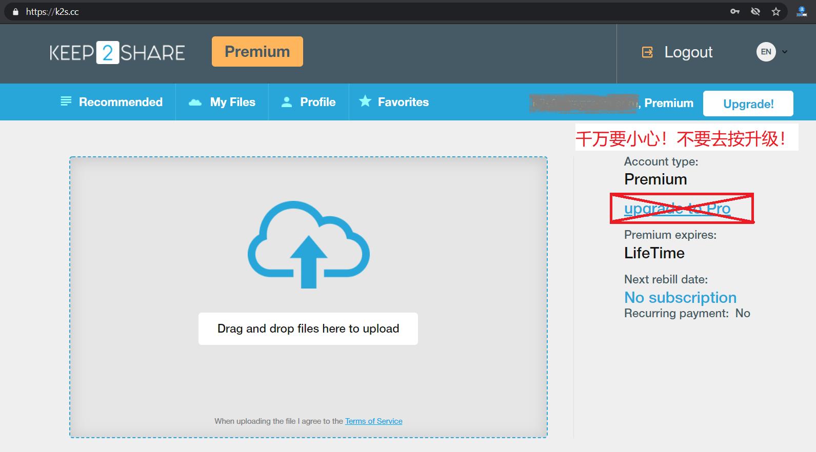 购买Keep2Share/K2S或FileBOOM/FBOOM终身会员帐号